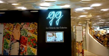 galerie-des-galeries1