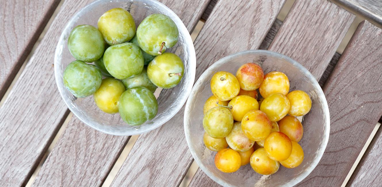 夏の終わりを感じさせる果実たち