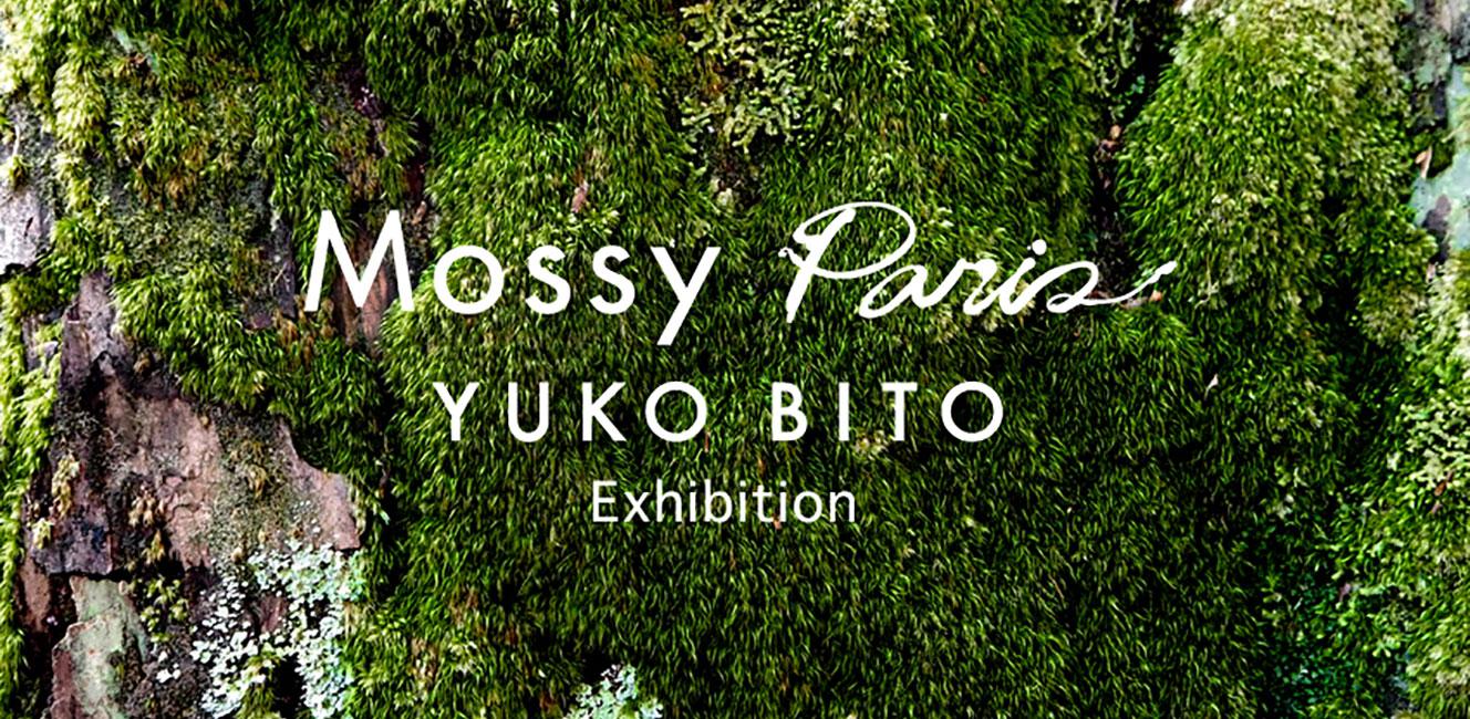 グリーンアーティスト尾藤祐子さん「森は生きている。」展